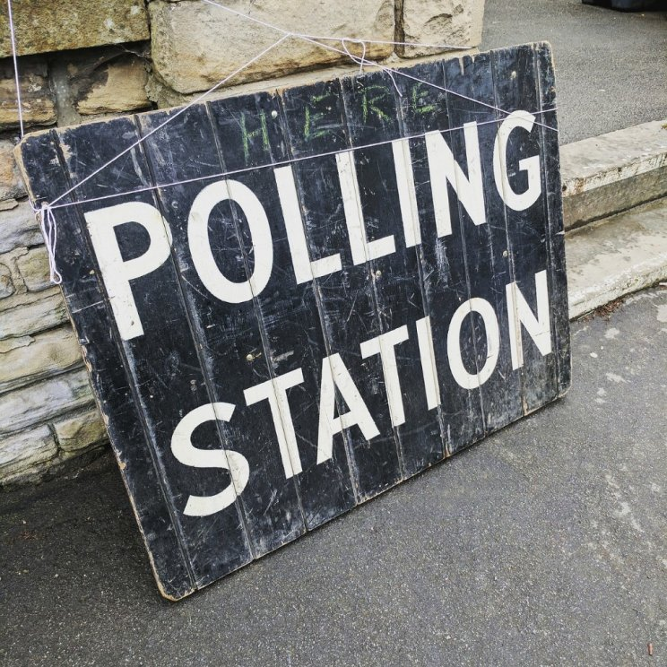 Election going to the dogs: Polling station pooches trending