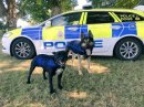 Gloucestershire Constabulary dogs and horses get more legal protection Image