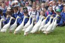 Celebrating the countryside at Royal Three Counties Show Image