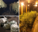 Cannabis farm found at abandoned Gloucester nightclub KCs Image