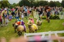 Baaarmy day in store at sheep racing event Image