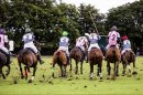Alzheimer's Society polo day in the Cotswolds Image