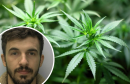 Albanian man jailed after £84,000 cannabis factory raid Image
