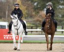 Hartpury study: Equine industry needs to step up for Covid-19 Image