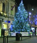 Tree returns to shine festive light on fundraising Image